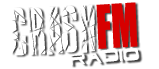 A simple and compact radio player, Google Chrome app for all alternative news and music radio stations. - www.crashfm.stream